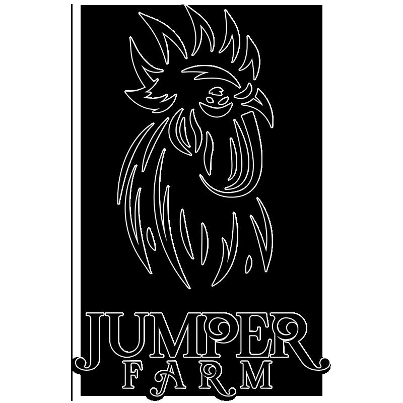 Johnnie Jumper
